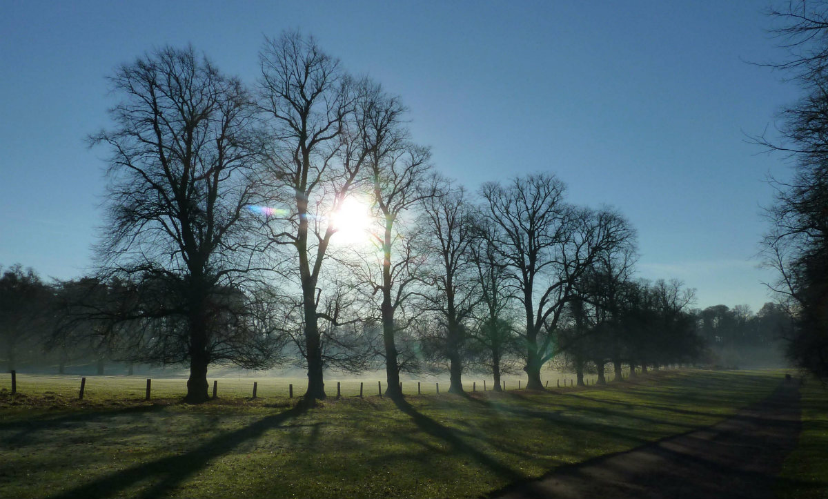 Frost and fog but the milder air is on its way