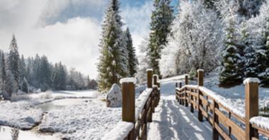 Winter forecast 2014/15