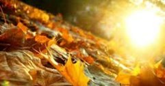 Long range Autumn forecast