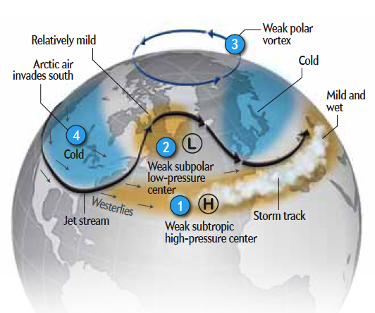 What Is The Polar Vortex?