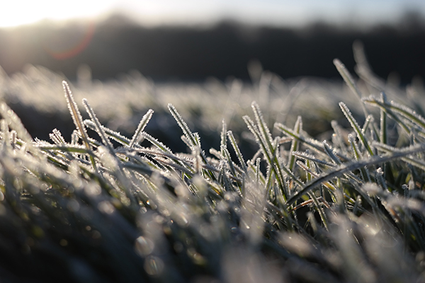Cold, Sunshine & Showers, Wintry In The North