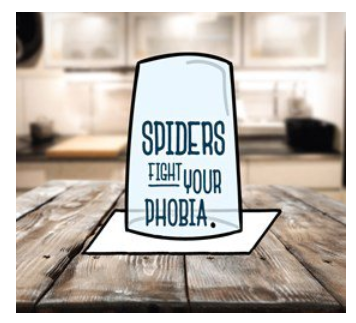 Fight your spider phobia