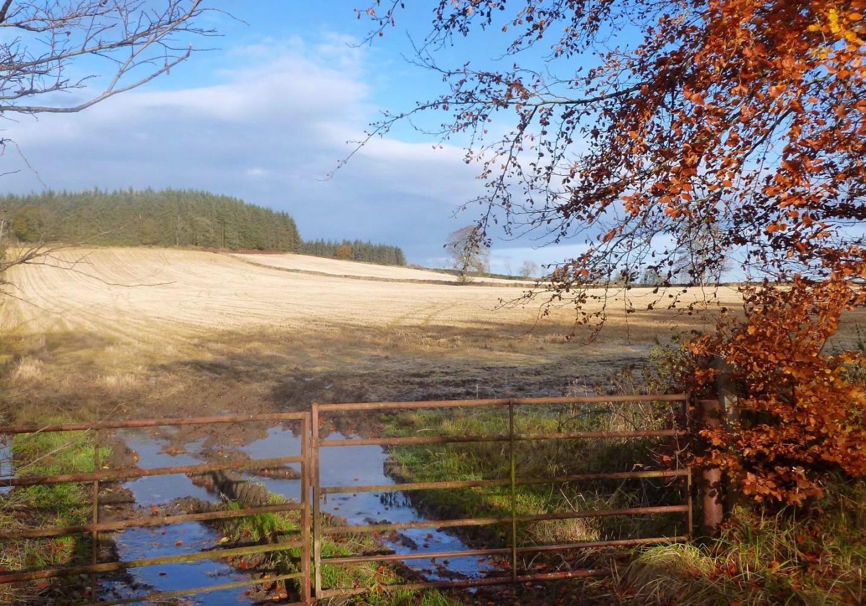 UK Weather: Wet Northwest Today, Very Mild Next Few Days, Before Turning Colder Next Week