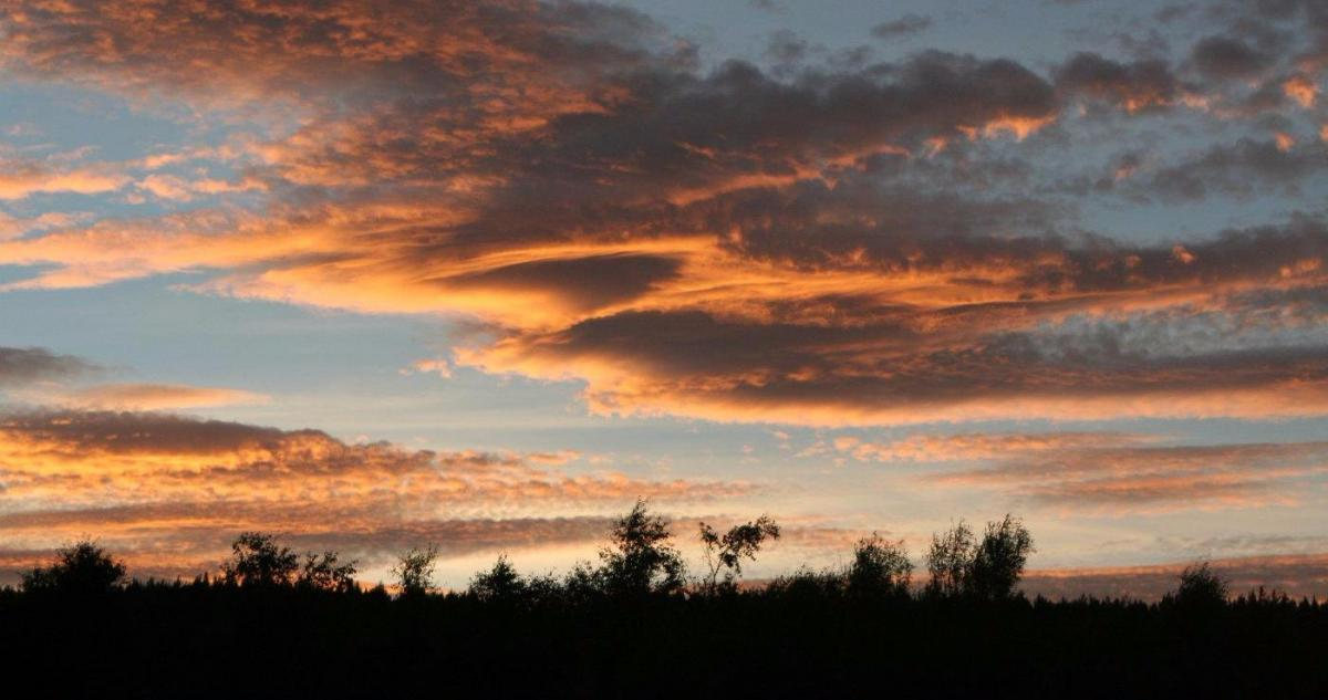 A week of two halves - wetter start and a drier end