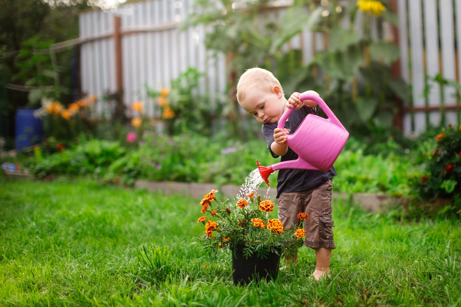Grow a Pizza Garden and Other Fun Gardening Activities for Children