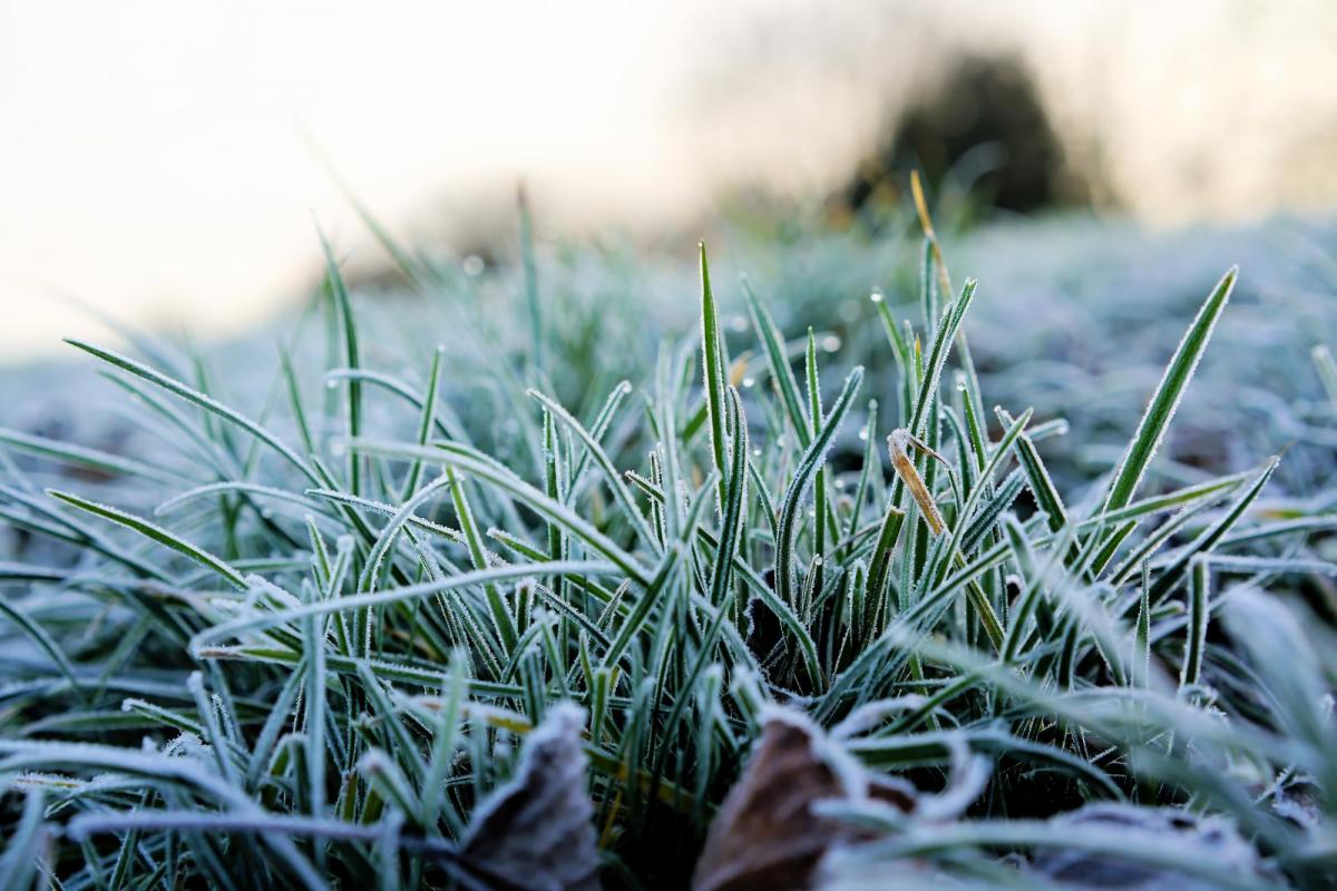 April 2021 Summary: Cold, dry, sunny and a frost every night