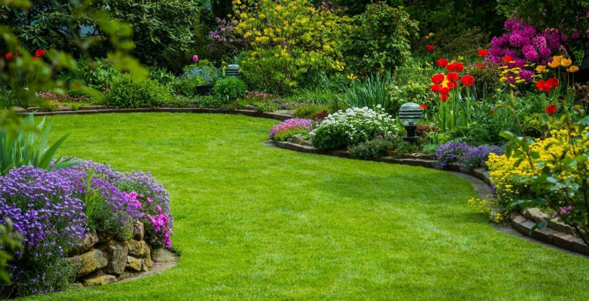 Good news for gardeners: Frost-free from this weekend - Plus some more rain