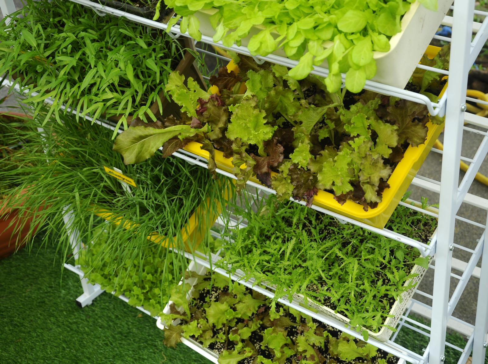 Stacking planting containers to maximise space