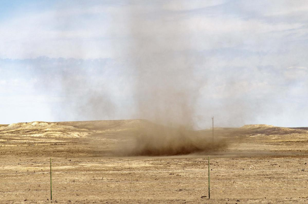Dust devils, whirlwinds or Willy Willys