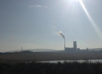 Air pollution monitoring in the UK; types, sources and effects
