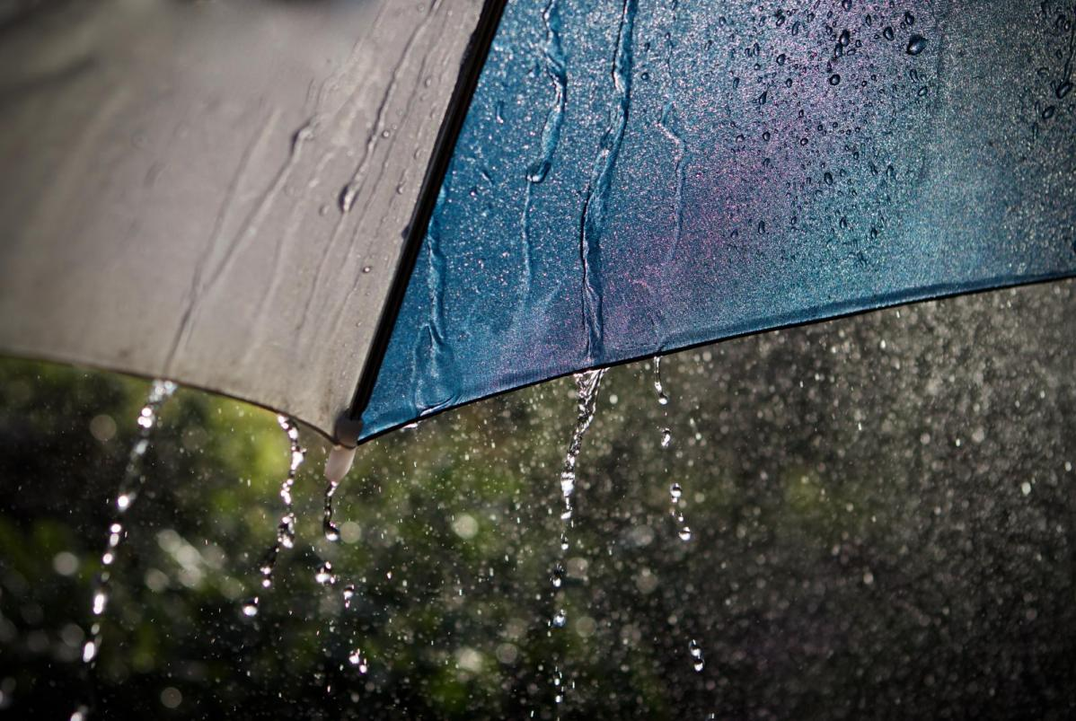 A mixed start to July with heavy, thundery downpours
