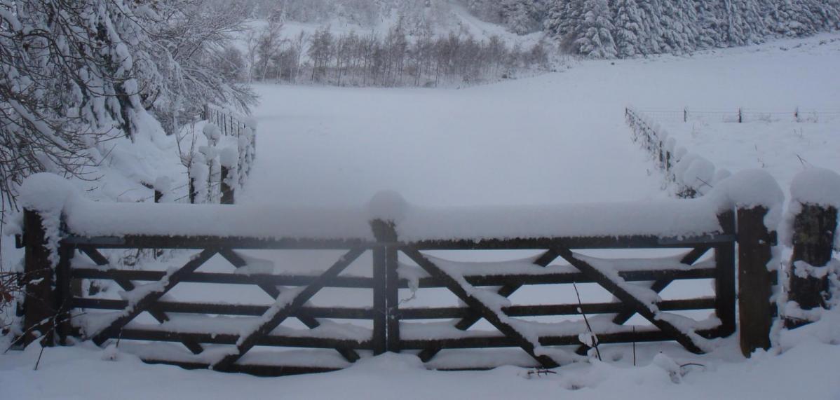 Be Winter Ready with Met Eireann and heavier snowfalls headlines