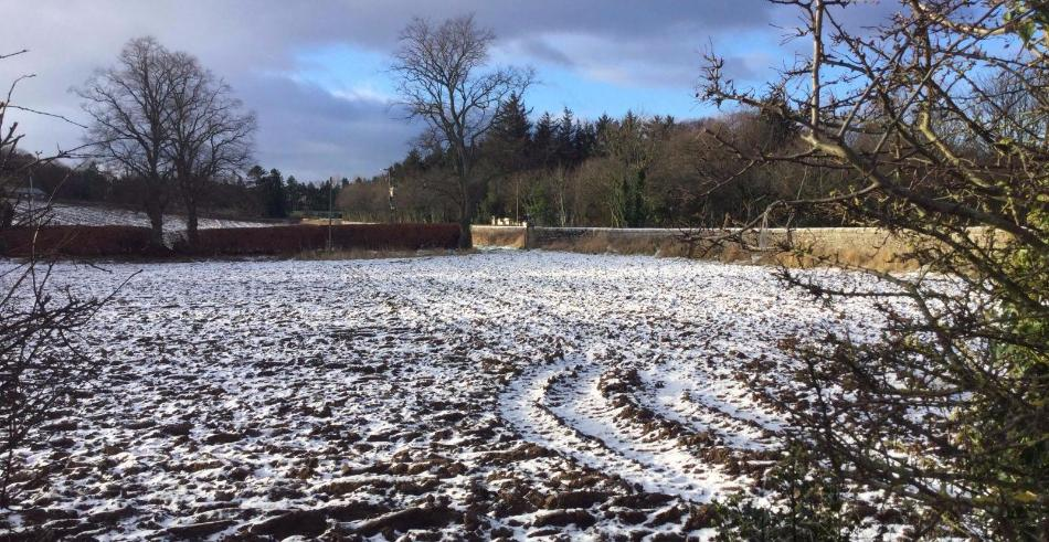 Cold & wintry for rest of the week, but signs of something less cold next week
