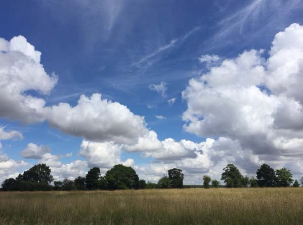 Dry, Sunny & Warm For Most, Outside Chance Of A Storm In The South