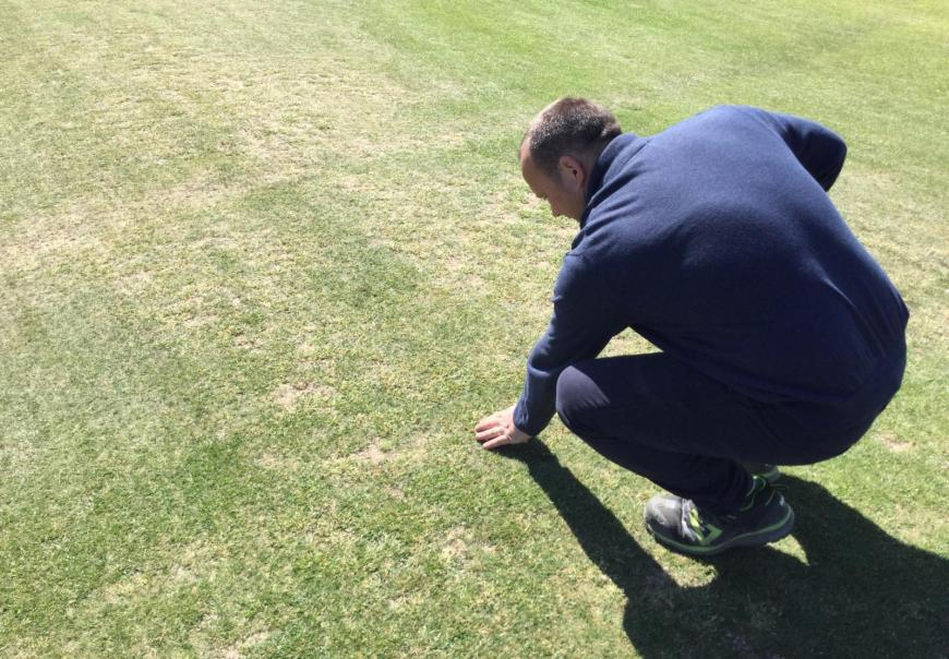 Course manager Dunbar inspecting the turf