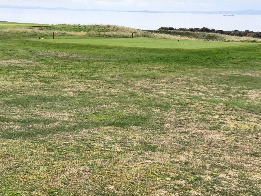 Gullane golf course showing signs of wear after the Open