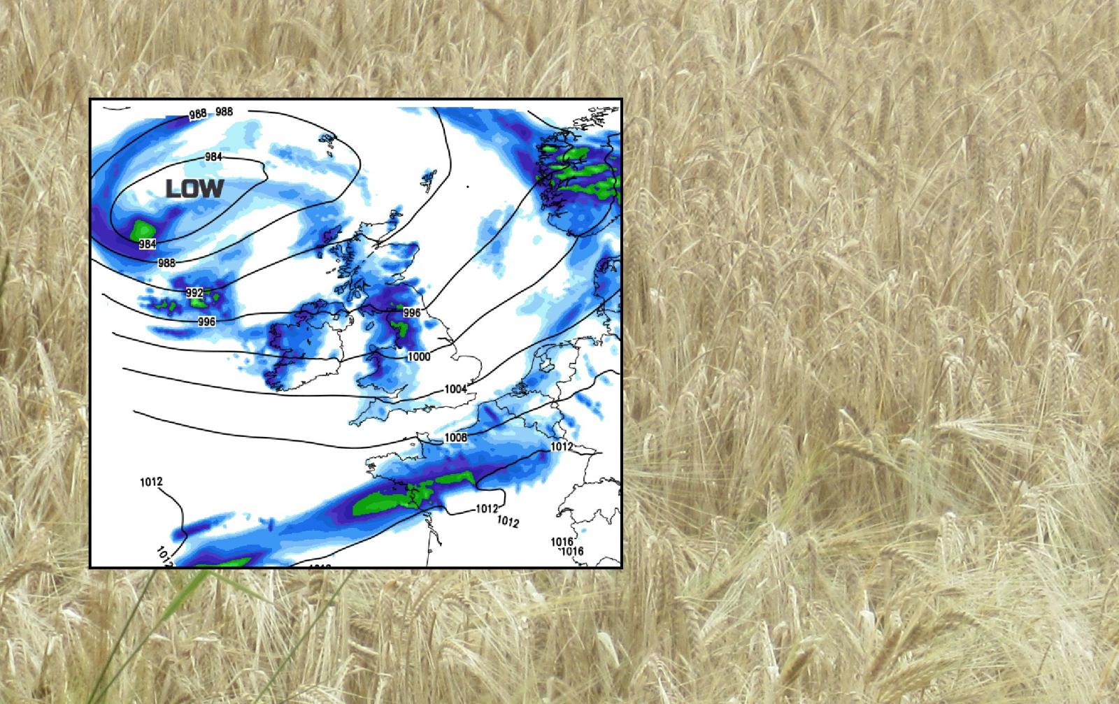 Weather hope for cricket fans, and next week for farmers. A windy weekend for the rest of us.