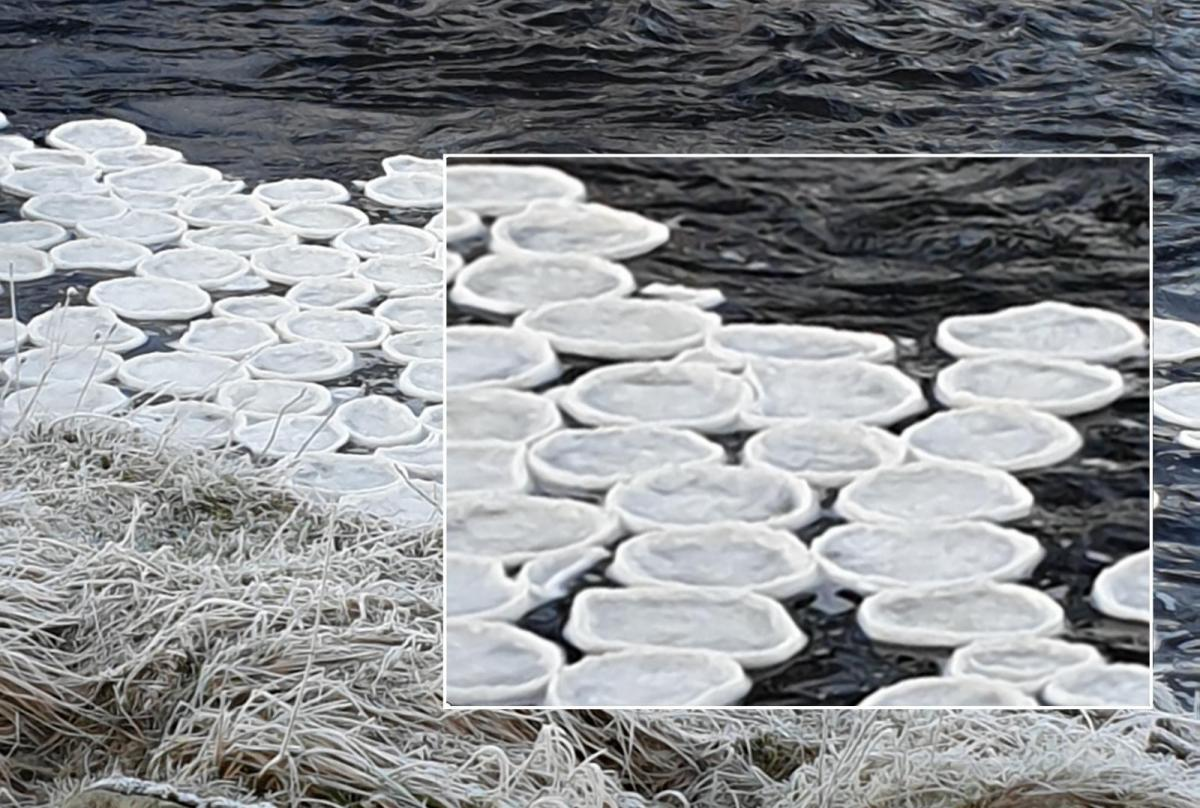 Ice Pancakes found in the UK