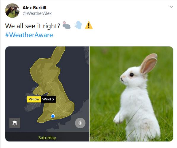 Yellow warning like a Rabbit