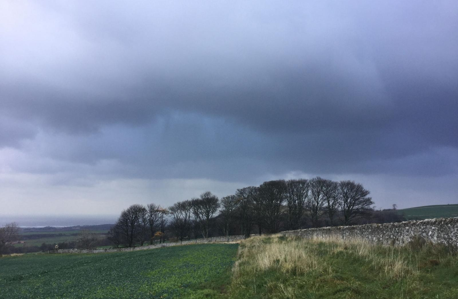 NImbostratus rain bearing clouds