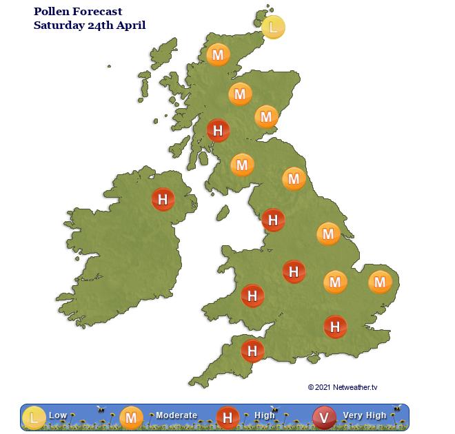 UK pollen count high