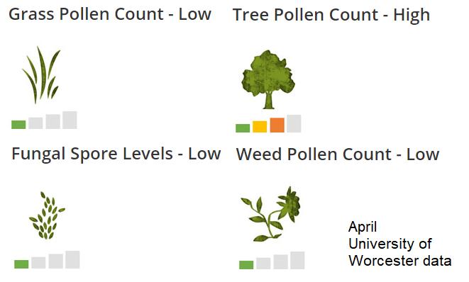 Different types of pollen UK