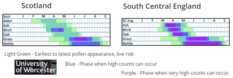 Tree and grass pollen calendar