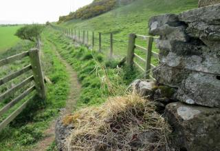 Out for a ramble this weekend, what's the weather as you Walk your Way