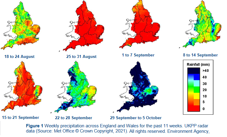 Environment Agency rainfall data 2021