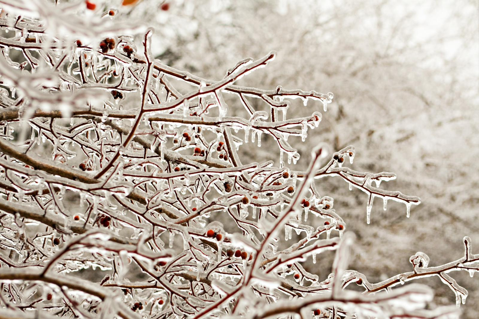 What is Freezing Rain and what is there to worry about? Warnings and Icestorm