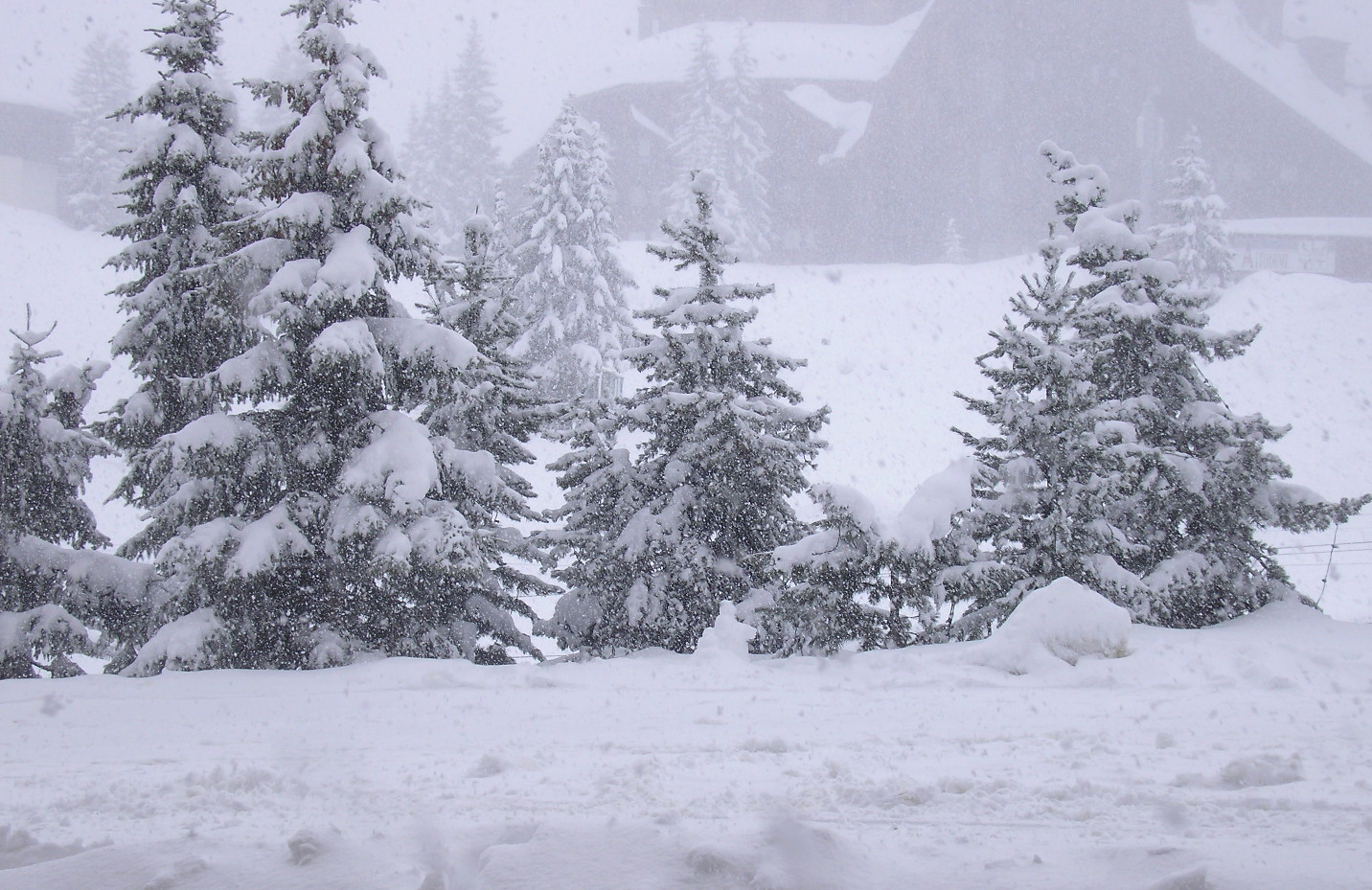 Further Heavy Snow over the Alps this week, but mixed with variable temperatures