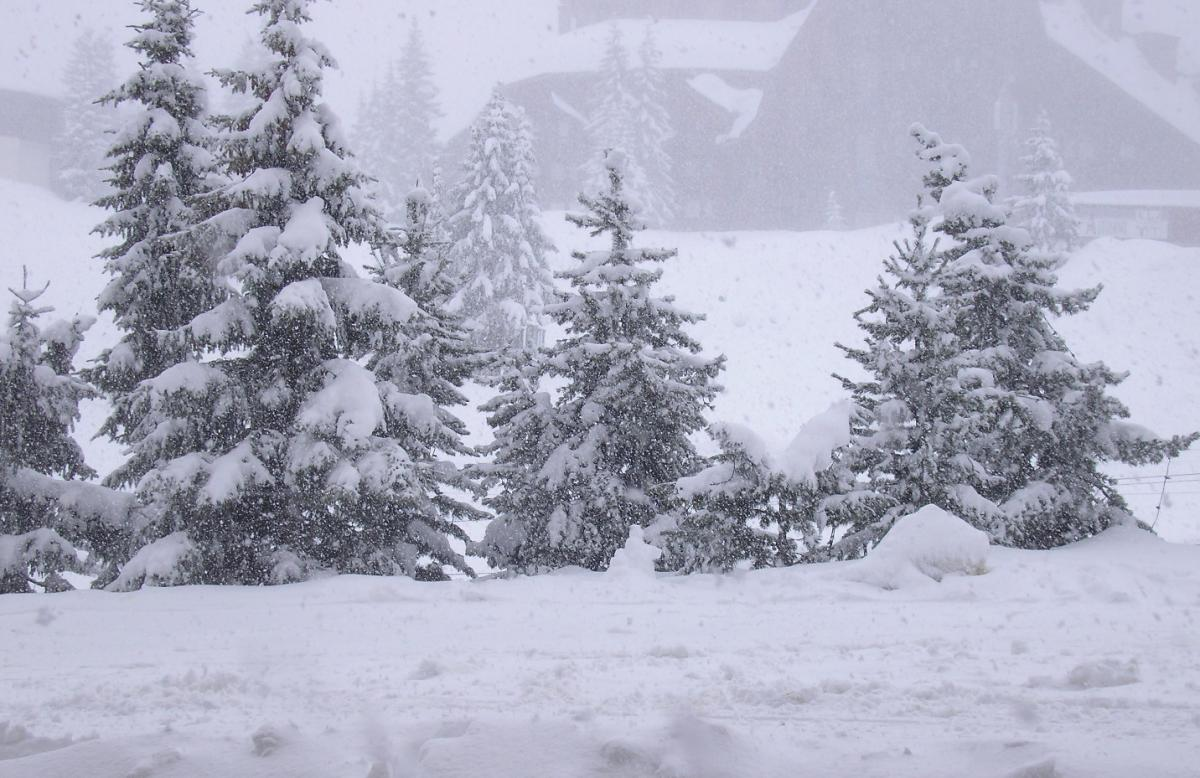 Heavy snow for this Alps this weekend with great conditions expected on piste for next week